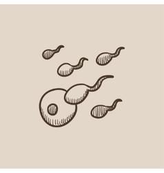 Fertilization sketch icon vector image