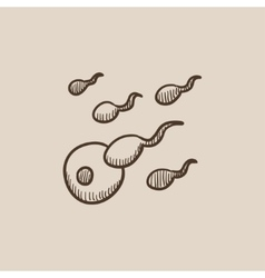 Fertilization sketch icon vector image vector image