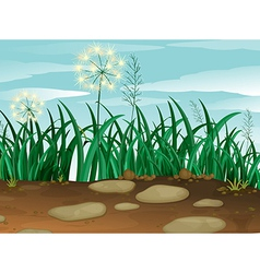 Green grass under the clear blue sky vector image vector image