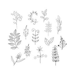 Leaves doodle set vector