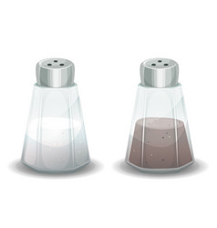 Salt and pepper spices shaker vector