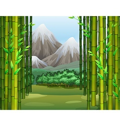 Bamboo jungle with mountains background vector