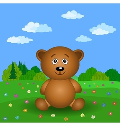 Teddy bear on a summer flower meadow vector image