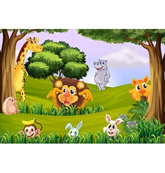 Animals at the forest vector image