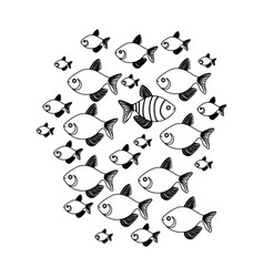 Silhouette set collection fish aquatic animal with vector
