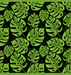 monstera seamless beckground tiled jungle pattern vector image