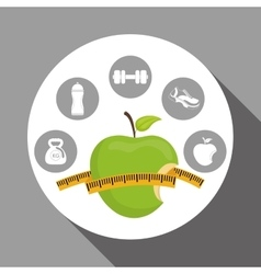 healthy lifestyle design over white background vector image