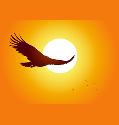Soaring eagle vector