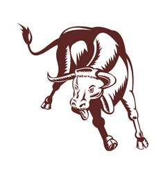 Angry texas longhorn bull charging vector