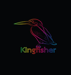 A kingfisher on black background bird vector