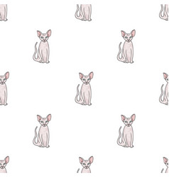peterbald icon in cartoon style isolated on white vector image vector image