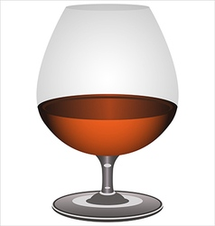 Brandy glass vector