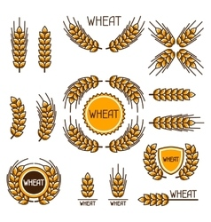 Design elements with wheat agricultural image vector