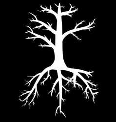 Trees with dead branches and roots vector image vector image