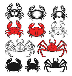 set of the crabs icons on white background vector image