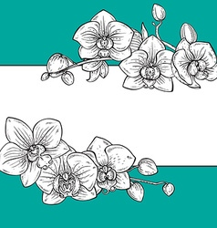 Beautiful floral frame with orchid flowers vector image