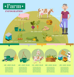 Farm lifestyle infographic colorful poster vector