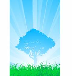 summer tree vector image vector image