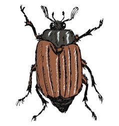 may bug vector image