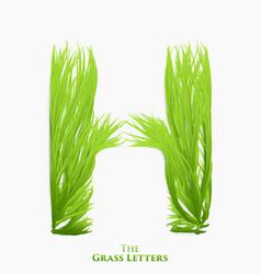 Letter h of juicy grass alphabet green h vector
