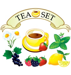 Tea set aromatic plants vector