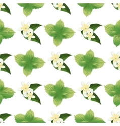 Mint stems and leaves drawing seamless pattern vector