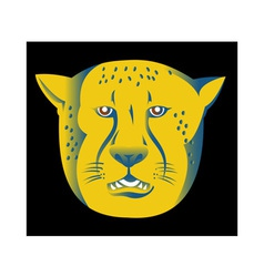 cheetah head facing front vector image vector image