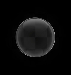 glass sphere vector image vector image