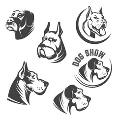 Set of the dog heads icons isolated on white vector