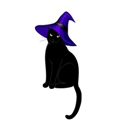 black cat isolated vector image