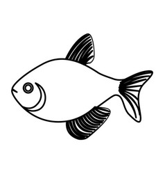 Silhouette fish aquatic animal icon vector