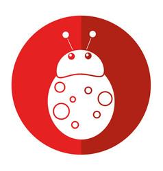 ladybug fly antenna animal shadow vector image