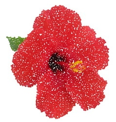 Hibiscus dotted flower vector image vector image