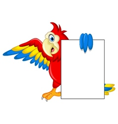 Macaw bird with blank cartoon sign for you design vector image vector image