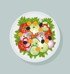 salad vegetables fresh dish vector image