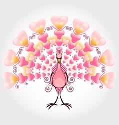 Valentine love bird peacock vector