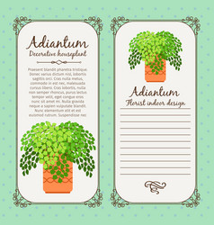 Vintage label with adiantum plant vector