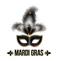 Black mardi gras carnival mask with feathers vector