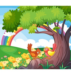 Birds under the tree with a rainbow in the sky vector