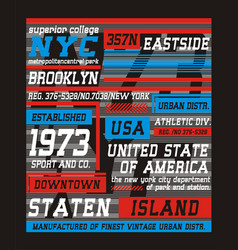 college brooklyn new york typography design vector image vector image