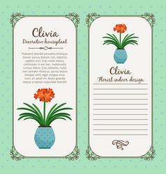 Vintage label with clivia plant vector