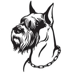 schnauzer black white vector image vector image