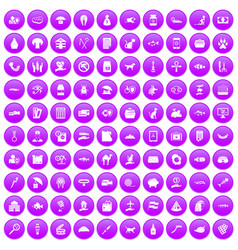 100 cat icons set purple vector