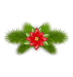Christmas composition with fir twigs and flower vector