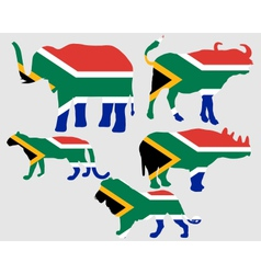 Big five south africa vector
