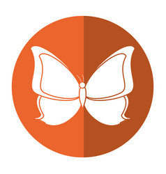 Butterfly animal insect fly shadow vector