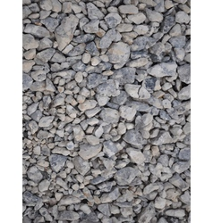 pebbles vector image