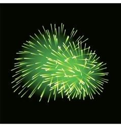 Green fireworks on dark background vector