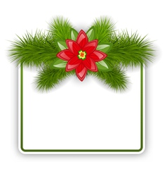 Christmas postcard with fir twigs and flower vector