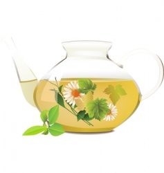 glass teapot vector image vector image
